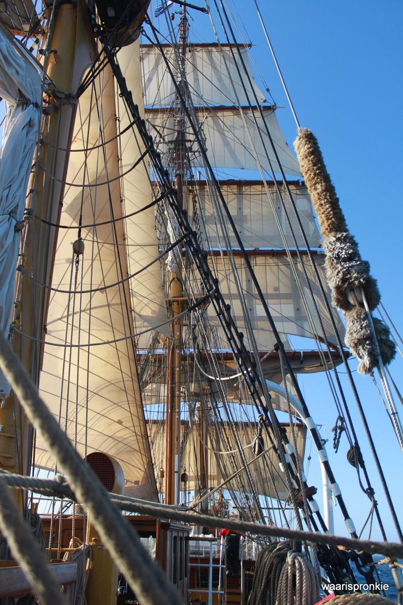 Bark Europa, Sails