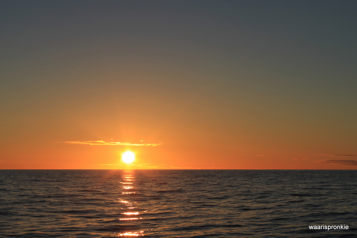 Bark Europa, Sunset