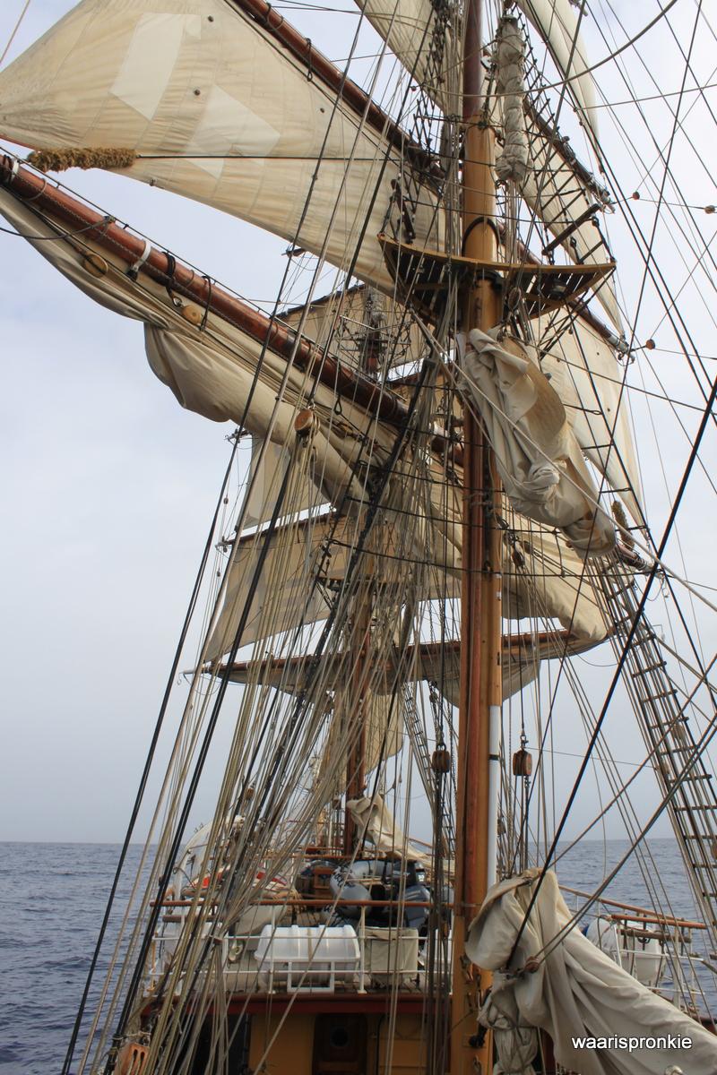 Bark Europa, Stopping the ship