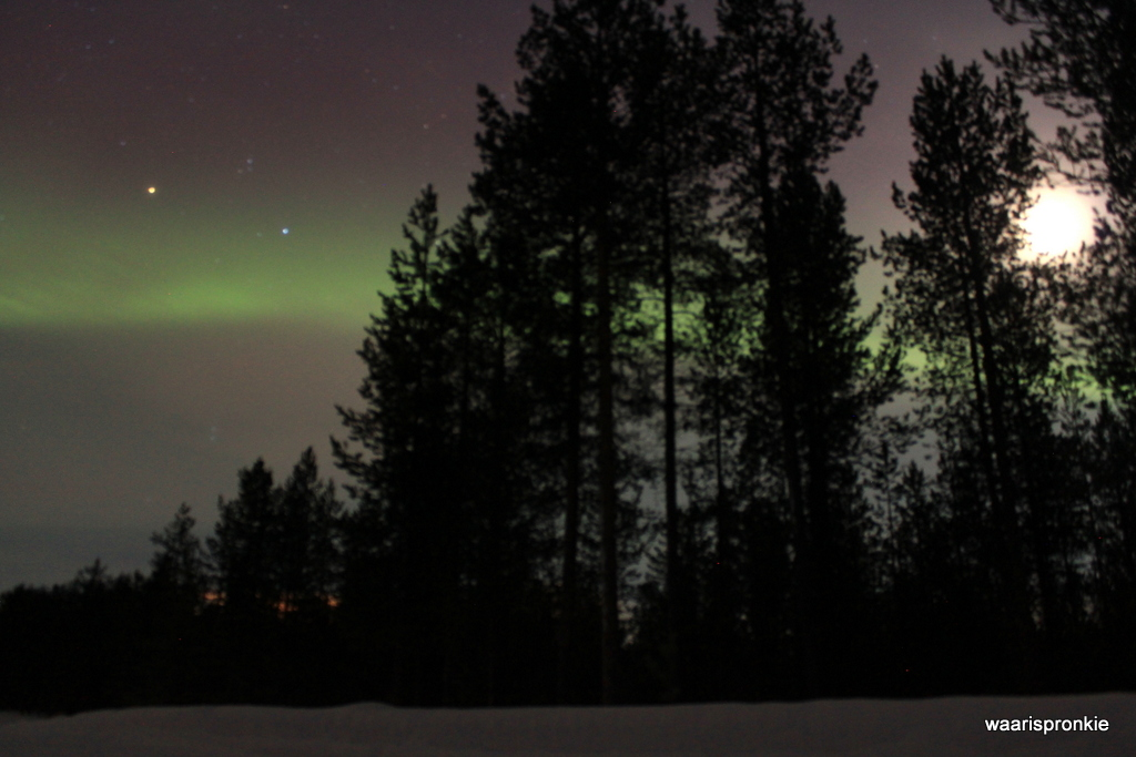 Northern Lights, Ivalo