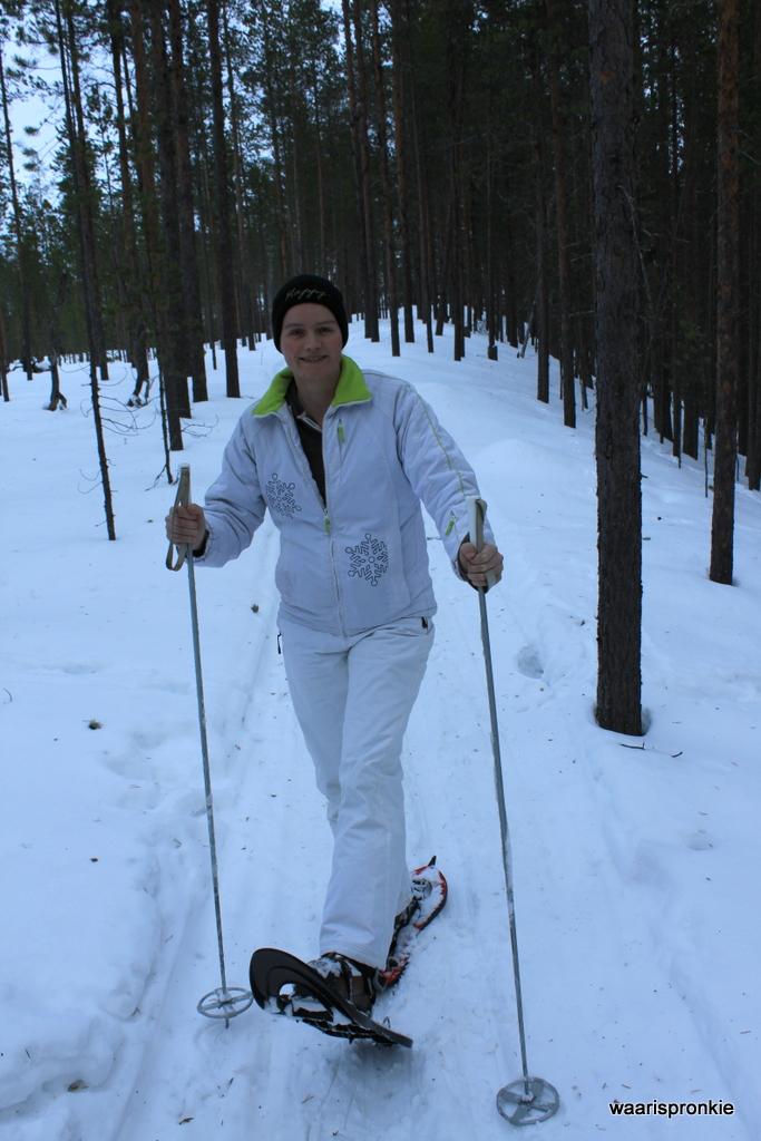 Snowshoeiing in Ivalo
