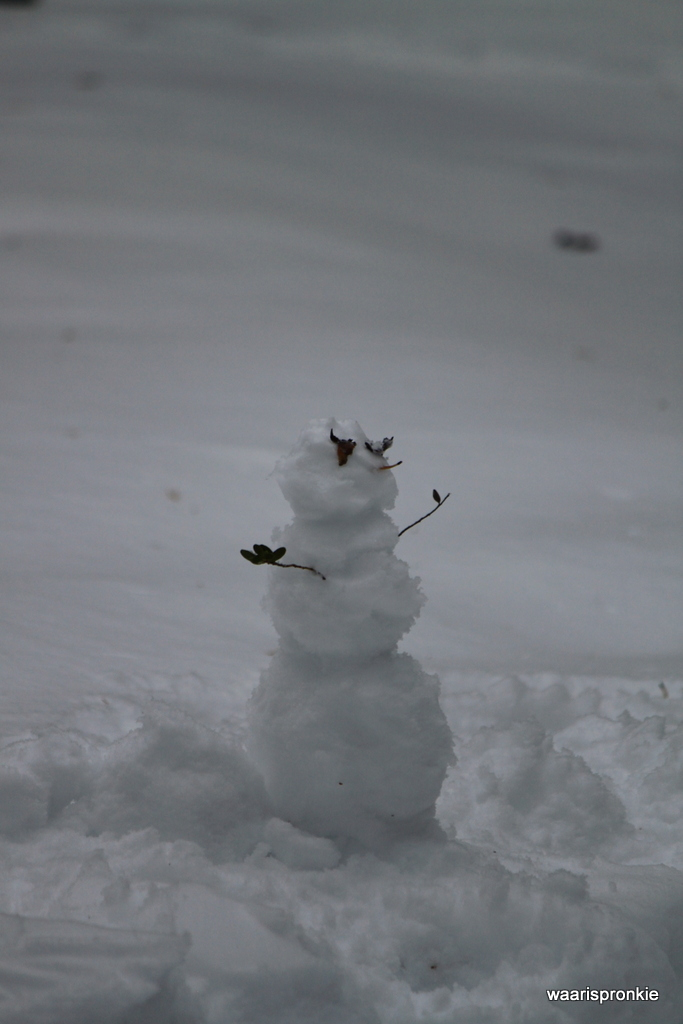 Snowman in Ivalo
