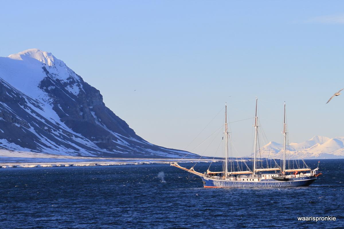 Sailing ship at Isfjorden