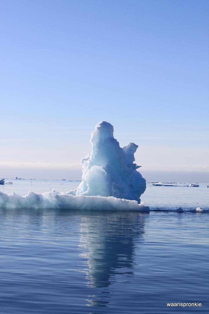 Zodiac Tour, Ice float