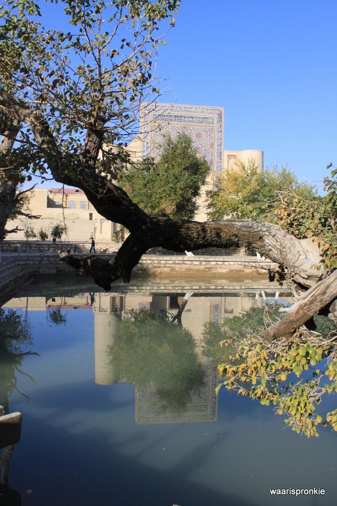 Nadir Divanbegi Khanaka, Bukhara